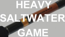 heavy-saltwater-game-tn