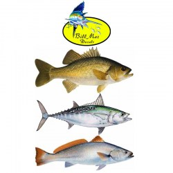 Bill-Mar-Fish-Decals